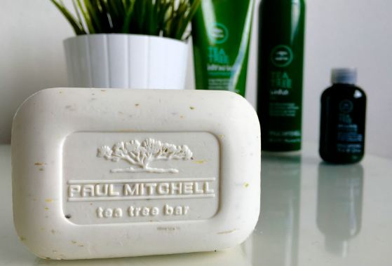 Paul Mitchell Tea Tree Body Bar Top Most Soap Brands in the World 2018