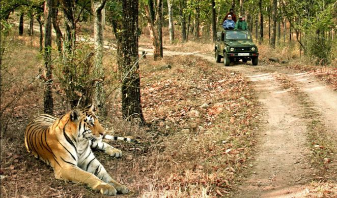 bandhavgarh national park, Top 10 Best National Park and Wildlife Sanctuaries in India 2017