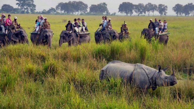 kaziranga national park, Top 10 Best National Park and Wildlife Sanctuaries in India 2018