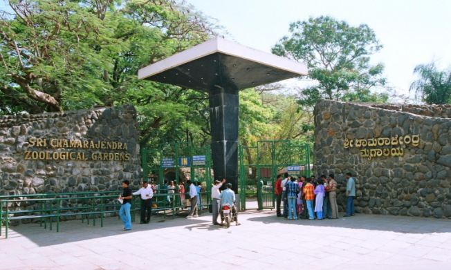 mysore-zoo-top-best-largest-zoos-in-india-2018