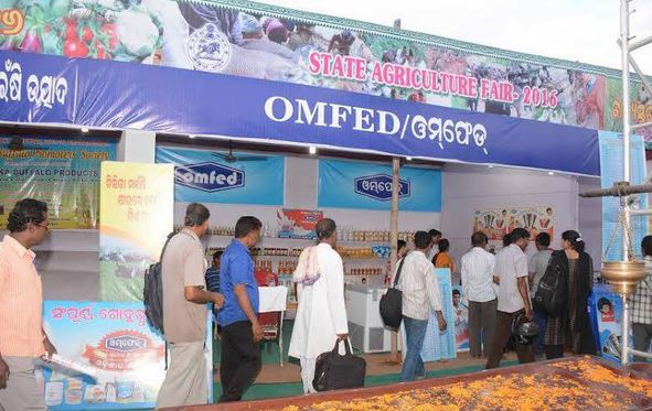 omfed, Top 10 Best Dairy Companies in India 2019