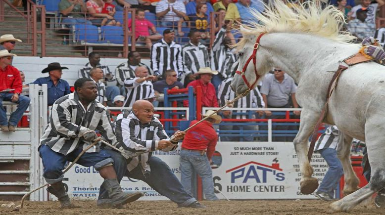 Prison Rodeos Top Famous Unusual Sports in The World 2018