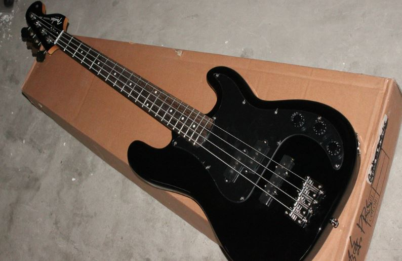 Bass (Guitar) Top Most Famous Easiest Instruments to Play 2017