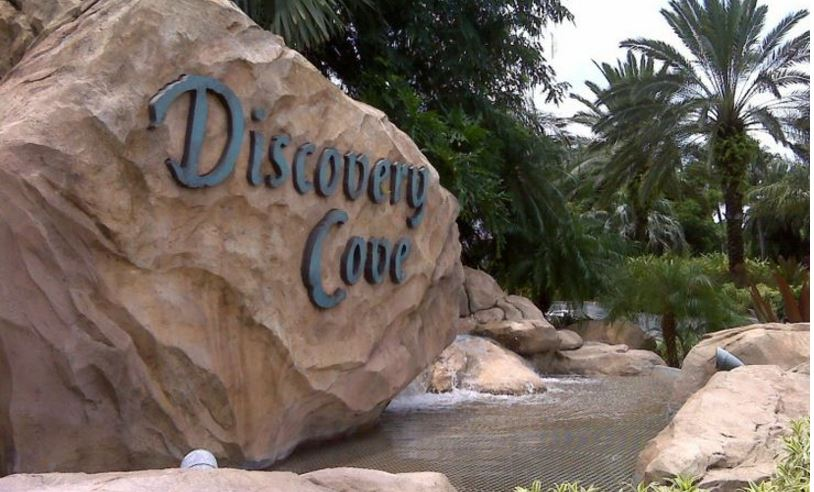 discovery-cove-top-10-best-themes-amusement-park-companies-in-the-world-2017