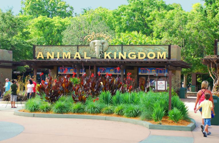 Disney's Animal Kingdom Top Best Themes-Amusement Park Companies in The World 2017