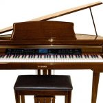 Top 10 Best Piano Models