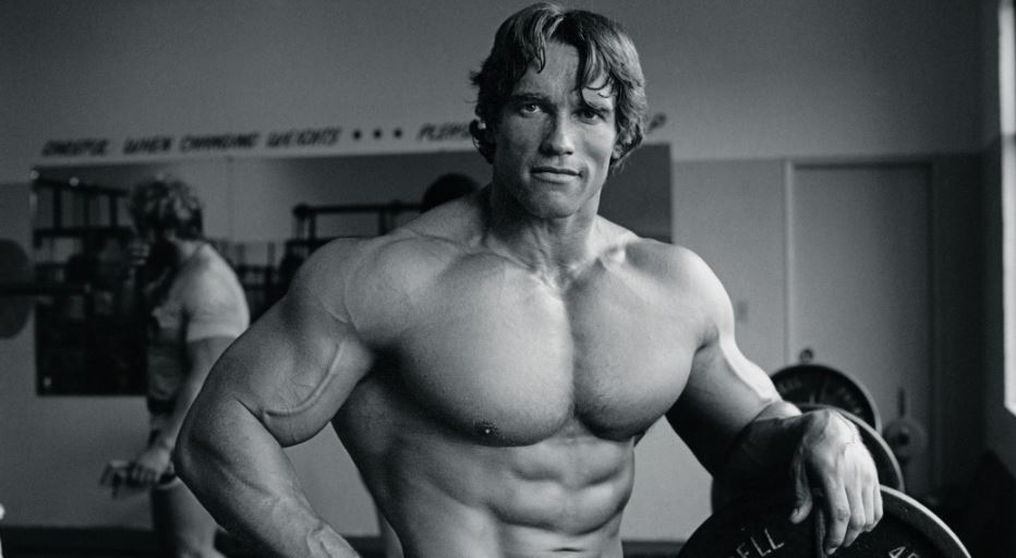 Arnold Schwarzenegger Top 10 Most Popular Bodybuilders of All Time 2017