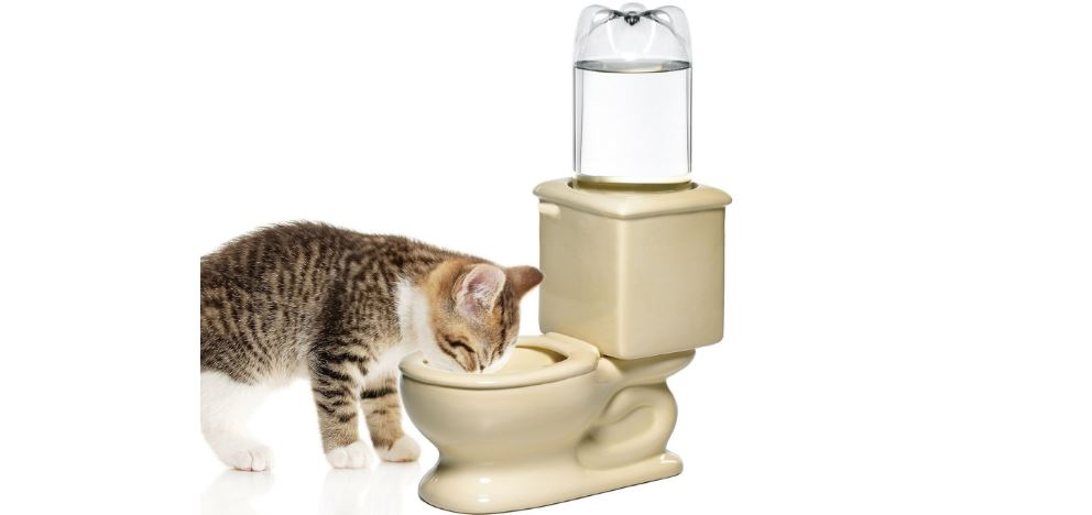 CSB TOILET BOWL Top Famous Selling Cat Bowls 2019
