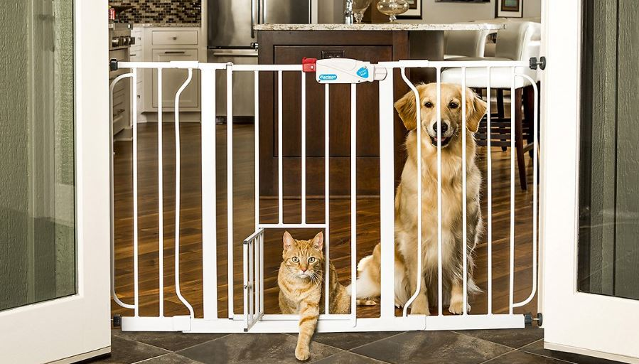 Best dog doors 2017 reviews 10 top selling brands carlson 44 inch extra wide walk through gate with pet door top best selling solutioingenieria Images