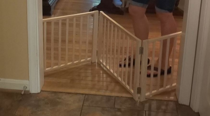 four-paws-folding-panel-gate5-panel-wood-top-most-famous-selling-dog-doors-2018