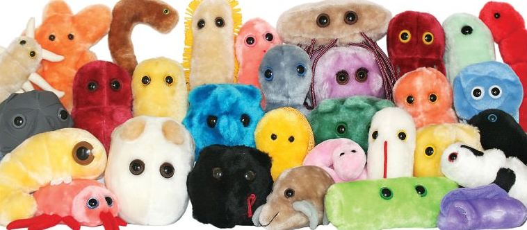 giant-microbes-top-popular-ridiculous-toys-ever-made-2017