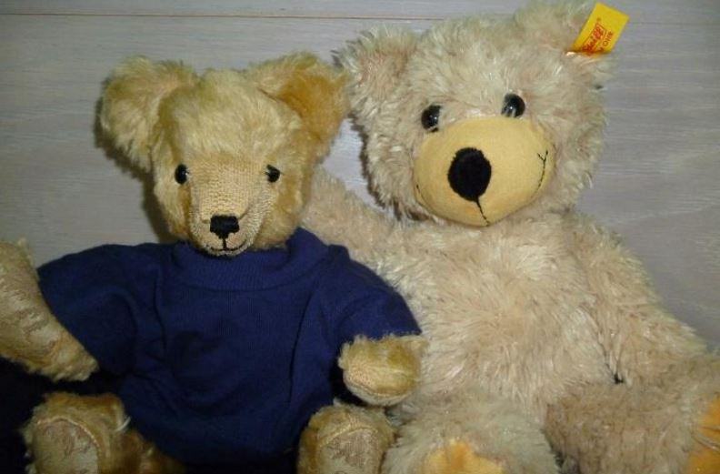 no-one-has-to-be-alone-when-they-have-a-teddy-bear-top-most-famous-reasons-to-like-teddy-bears-2018