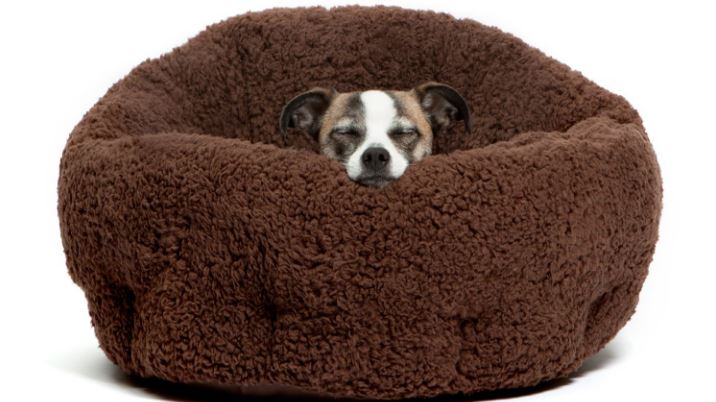 orthocomfort-deep-dish-cuddler-top-10-best-selling-dog-beds