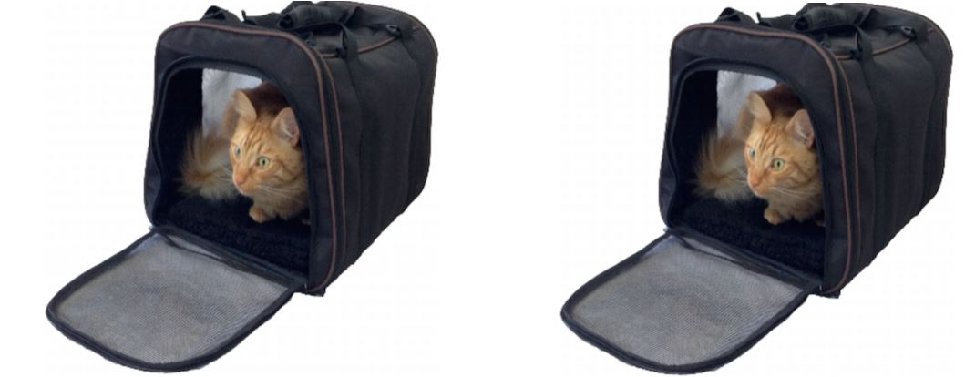 Pawfect Pet-Large Top Most Famous Selling Cat Carriers 2018