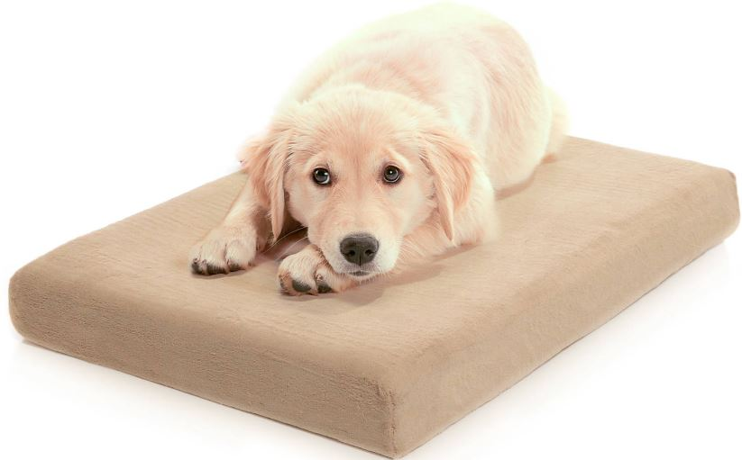 premium-orthopedic-memory-foam-dog-bed