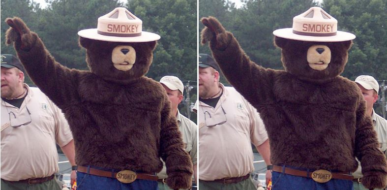 Smokey the Bear Top 10 Most Memorable Advertising Mascots of All Time