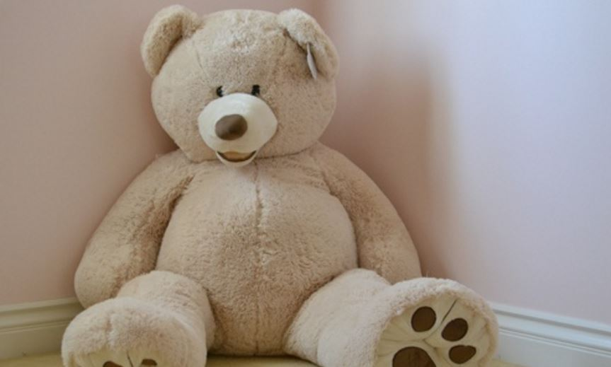 Teddy Bears don't Complain, Nag or Starts Arguments Top Most Popular Reasons to Like Teddy Bears 2018